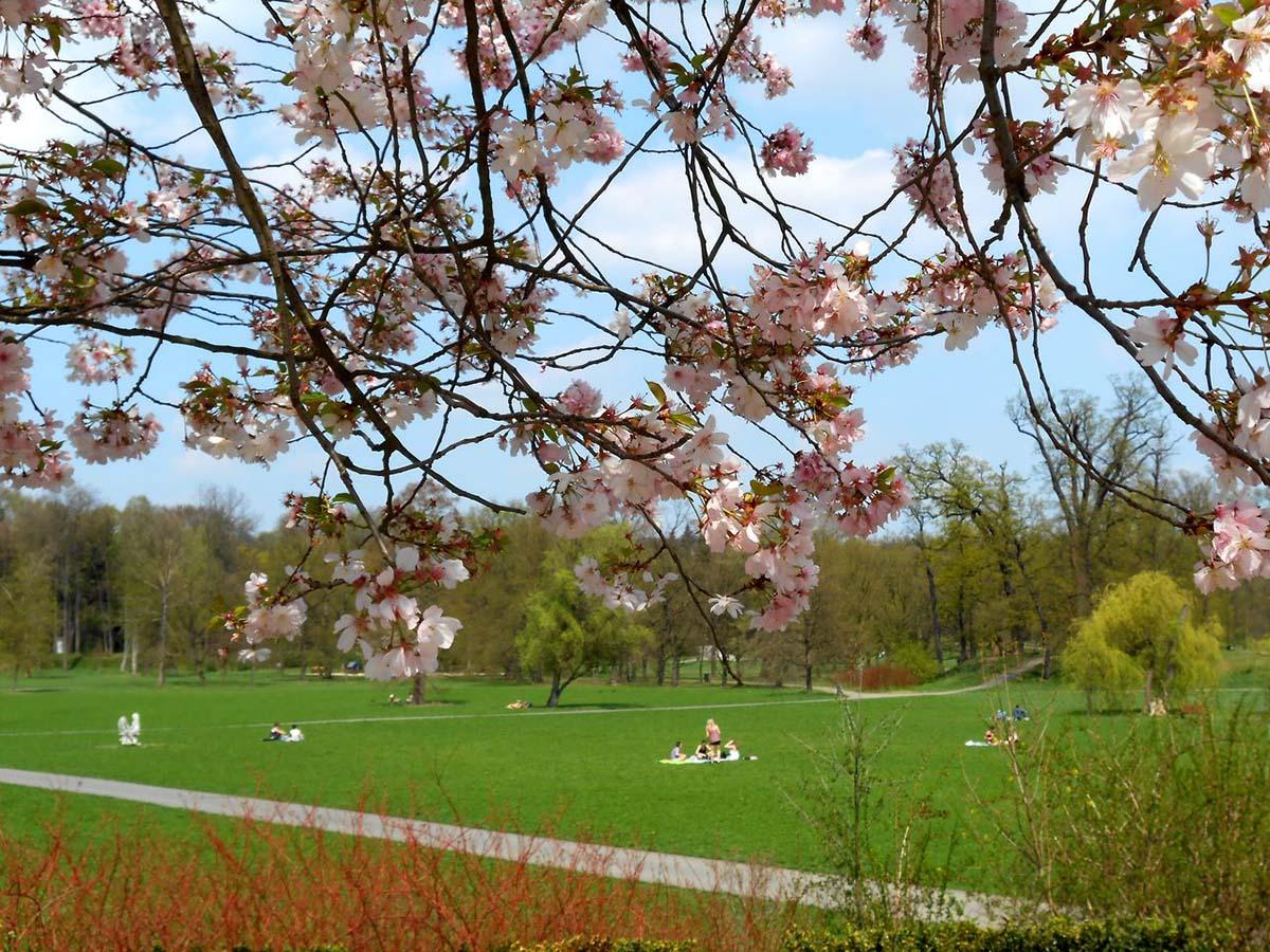 Прага город парков